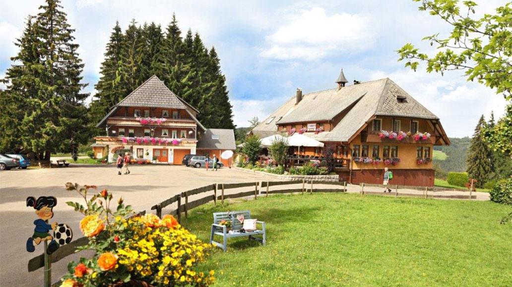 Wilhelmshöhe, Tourentipps im Schwarzwald