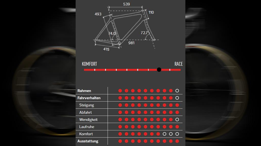 Argon 18 Gallium Pro Disc 15th Anniversary, Test, Kaufberatung, Traumräder