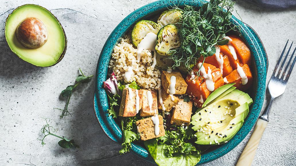 Darm, Gesundheit, Ernährung
